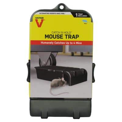 Multiple Catch Humane Outdoor and Indoor Mouse Trap