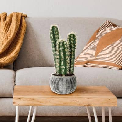 Faux Potted Cactus Plant 22 in. Artificial Hedge Cacti Succulent in a Clay Fiber Pot