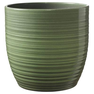 "6.3"" (16cm) Bergamo Leaf Green Glaze"