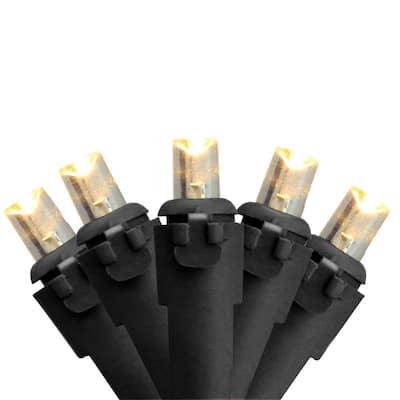 Set of 50 Warm White LED Wide Angle Christmas Lights - Black Wire