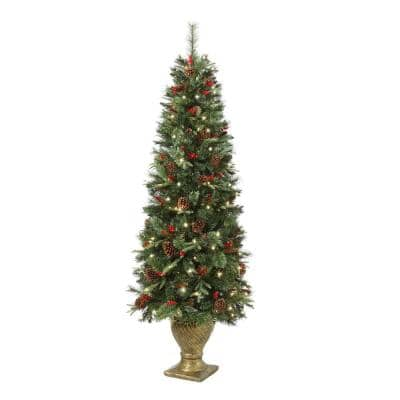 6.5 ft. Paces Hill Pine Potted Pre-Lit Artificial Christmas Tree with 200 Incandescent Clear Lights