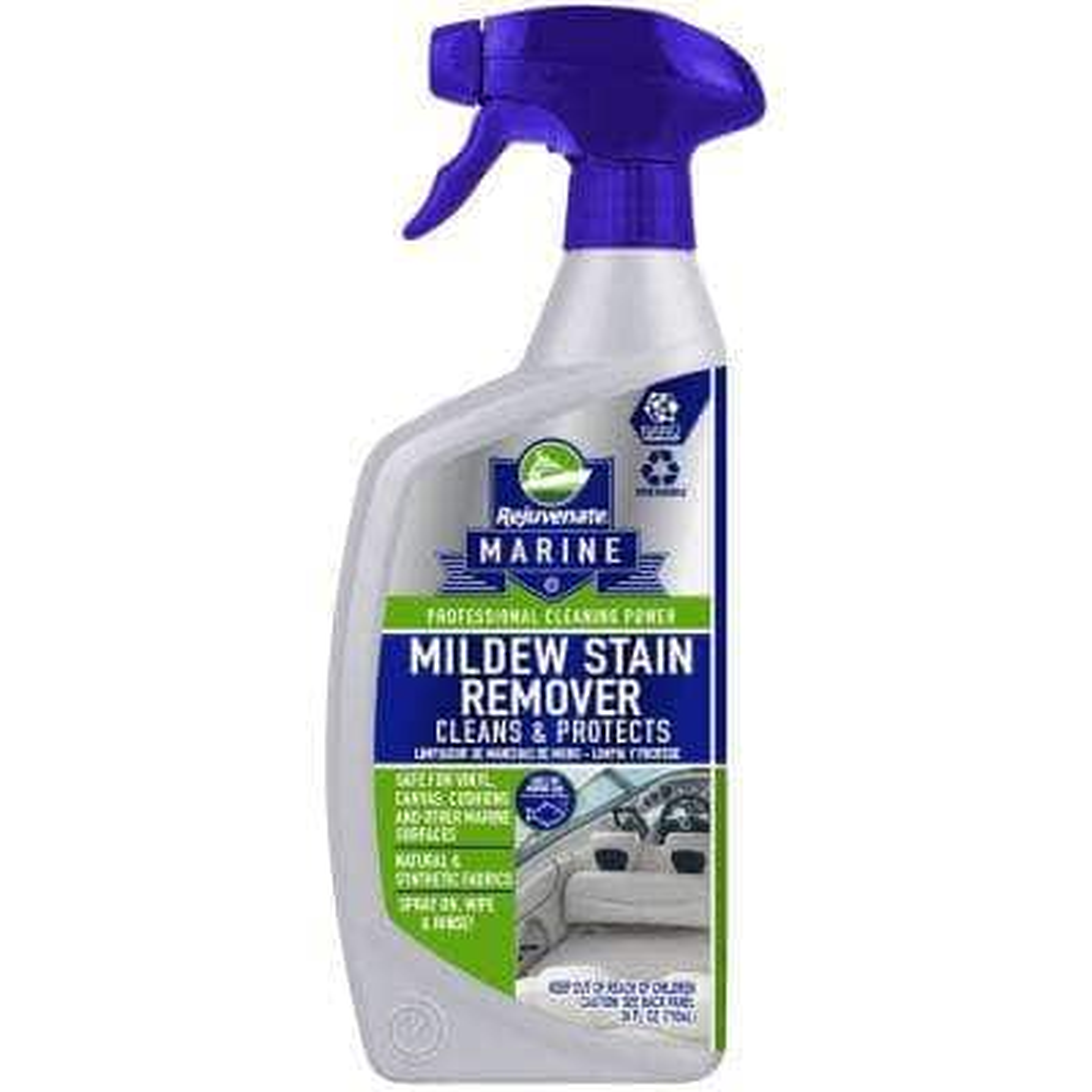 24 oz. Mildew Stain Remover