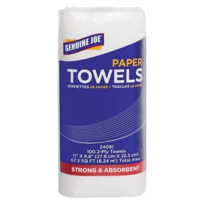 Household Paper Towels Roll 2-Ply (100-Sheets per Roll)