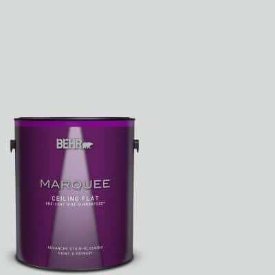 1 gal. #MQ3-25 Gray Shimmer One-Coat Hide Ceiling Flat Interior Paint & Primer