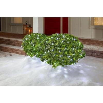 4 ft. x 6 ft. 150-Light LED Dome Cool White Net Light
