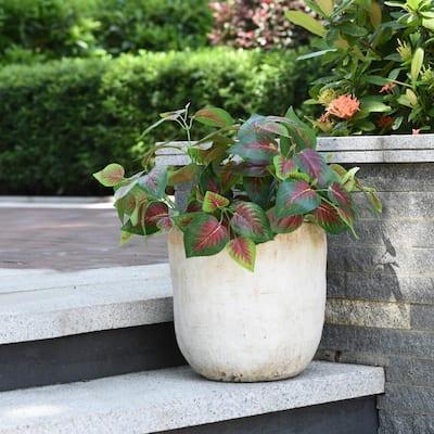 Tanbury 12 in. Cream Concrete Decorative Vase