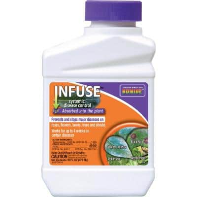 16 oz. Infuse Systemic Disease Control Concentrate