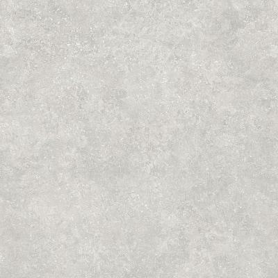 Starry Light 16 in. W x 32 in. L Luxury Vinyl Plank Flooring (24.89 sq. ft. / case)