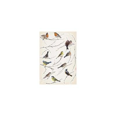 Birds Multicolored Animals Wall Decals