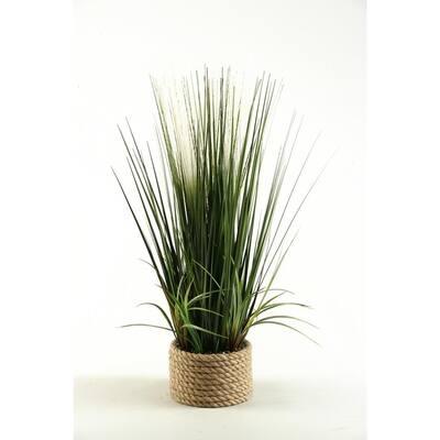 Indoor 30 in. Mixed Grasses in Ceramic Planter
