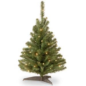 3 ft. Kincaid Spruce Artificial Christmas Tree with Clear Lights