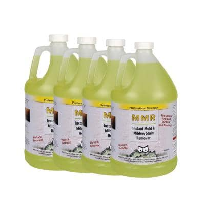 Professional 1-gal. Instant Mold and Mildew Stain Remover (4-Pack)
