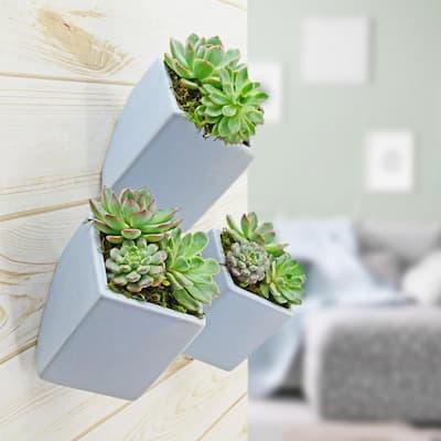 Cube 5-1/2 in. x 6 in. Sky Ceramic Wall Planter