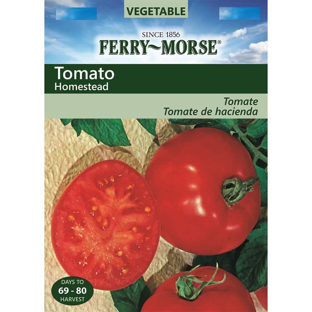 Tomato Homestead   2,000 seeds
