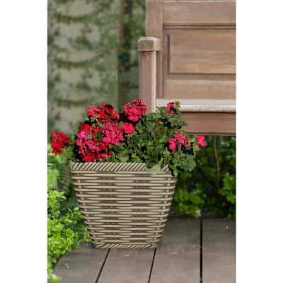 14 in. Market Place Willowbark Resin Planter