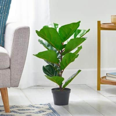 Sherard 2 ft. Green Artificial Fiddle-Leaf Fig Tree