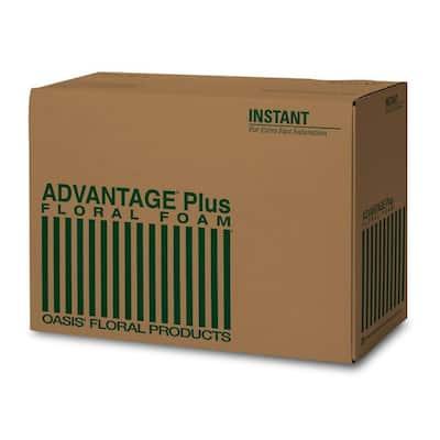 ADVANTAGE Plus Floral Foam Bricks (Case of 36)