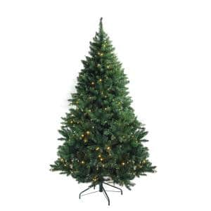 12 ft. x 80 in. Pre-Lit Buffalo Fir Full Artificial Christmas Tree Warm White LED Lights