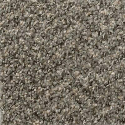 8 in. x 8 in. Texture Carpet Sample - Promenade -Color Drive