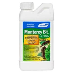 B.T. (Bacillus Thuringiensis) Pint Concentrate Outdoor Organic Insecticide