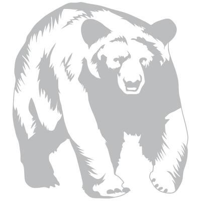 29 in. x 26 in. Bear Wall Decal