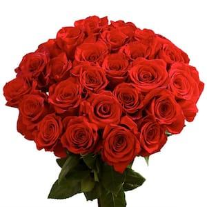 Fresh Red Roses (50 stems)