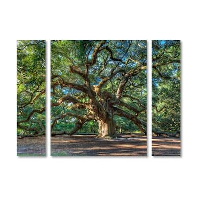 "24 in. x 32 in. ""Angel Oak Charleston"" by Pierre Leclerc Printed Canvas Wall Art"