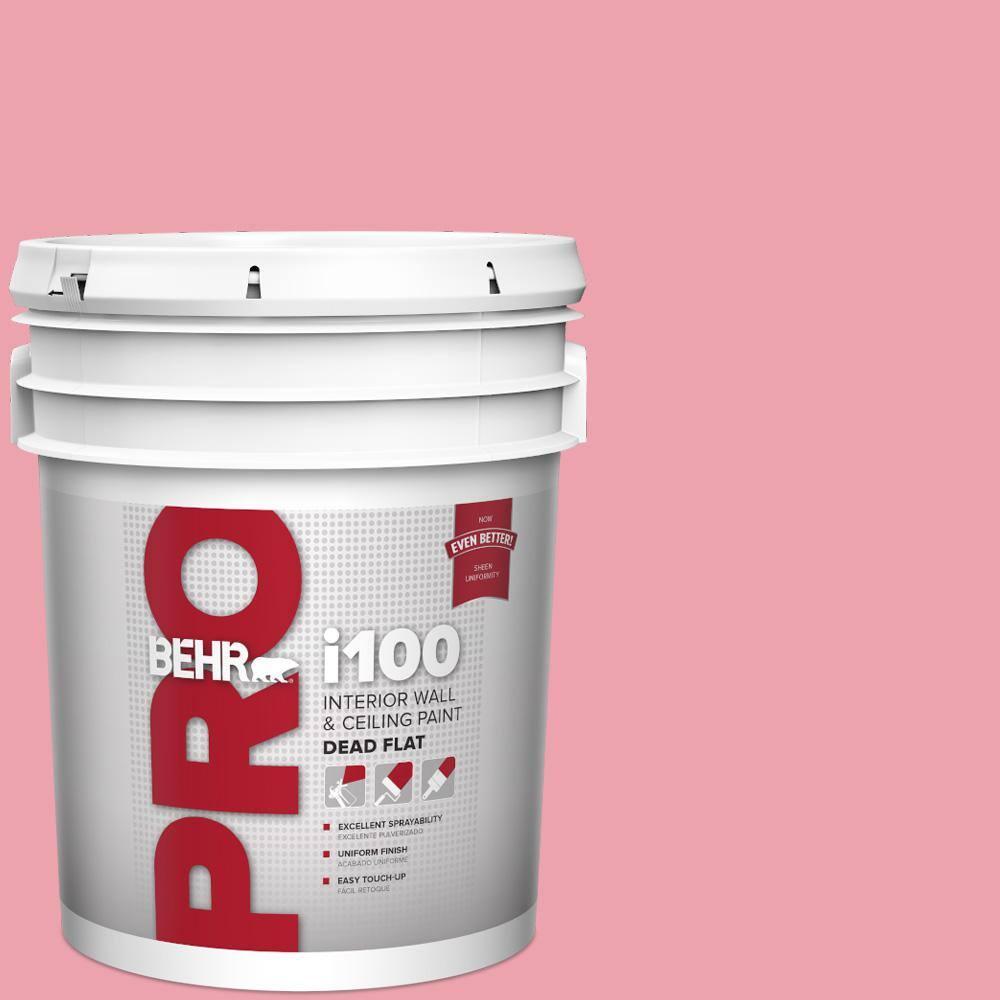 Behr Pro 5 Gal P150 3 Pinque Dead Flat Interior Paint Pr10505 The Home Depot