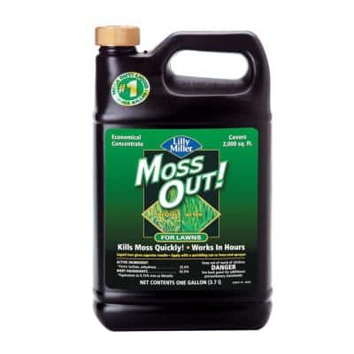 1 Gal. Moss Out! Moss Killer for Lawns