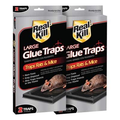 2xLarge Size Mice Mouse Rodent Outdoor Glue Traps Pads Indoor Super Sticky Rat