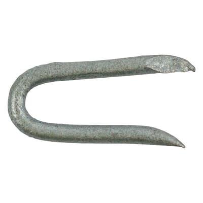 3/4 in. Hot-Dip Galvanized Staples (1 lb.-Pack)