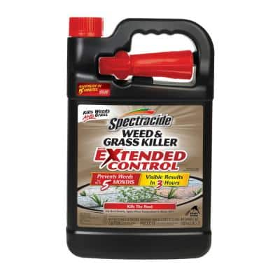 Weed and Grass Killer 128 oz. Ready-to-Use Extended Control Sprayer