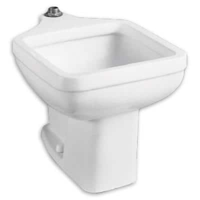 Floor Mounted 20 in. x 18 in. Clinic Service Sink in White