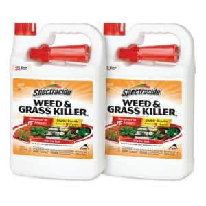 128 oz. Weed and Grass Killer Ready-to-Use Sprayer (2-Pack)