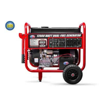 9,000-Watt Electric Start Dual Fuel Portable Generator CARB