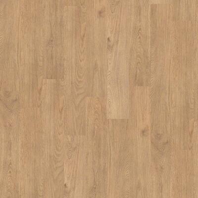 Gallantry 6 mil Desert 6 in. x 36 in. Glue Down Vinyl Plank Flooring (53.48 sq. ft./case)