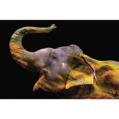 "Oppidan Home ""Elephant in Yellow Paint"" Acrylic Wall Art (32""H x 48""W)"