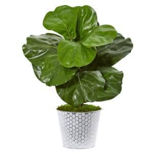 22 in. Fiddle Leaf Artificial Plant in Decorative Planter