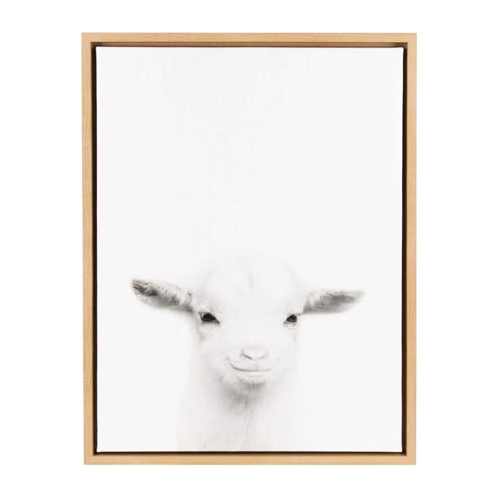 Details about  /14x21 24x36 Poster Horse Animal Goat Cat Modern 038
