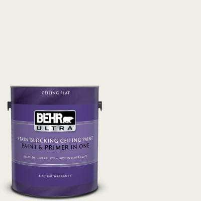 1 gal. #PPU10-13 Snowy Pine Ceiling Flat Interior Paint and Primer in One