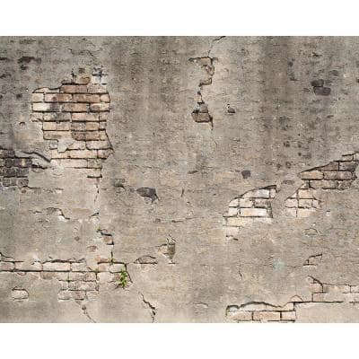 Broken Concrete Wall Mural