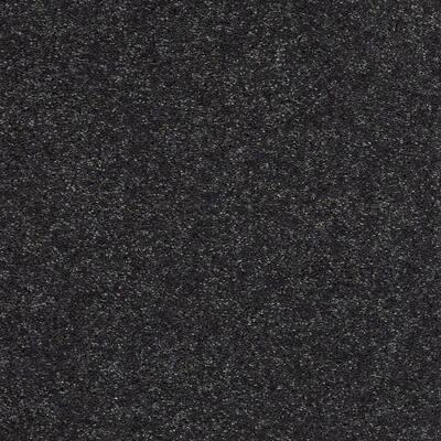 Brave Soul II - Color Darkest Navy Texture 15 ft. Carpet