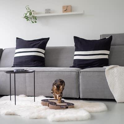 Snake Black Cardboard Cat Scratcher