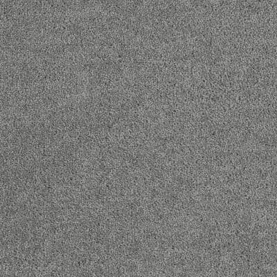 Moonlight - Color Reflection Texture 12 ft. Carpet