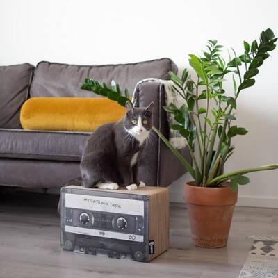 Mix Tape Black Cardboard Cat Scratcher