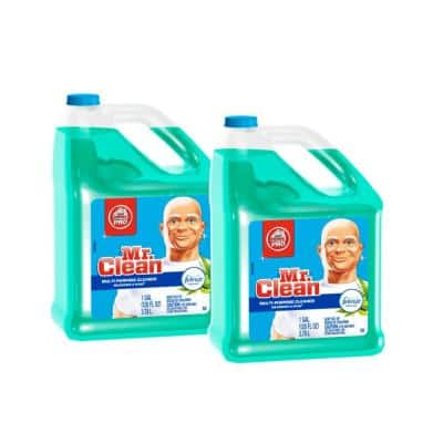 Home Pro 1 Gal. Meadows and Rain Scent with Febreze Freshness Liquid All-Purpose Cleaner (2-Pack)
