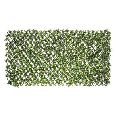 Expandable Willow Trellis with Gardenia Leaf (6-Pack)