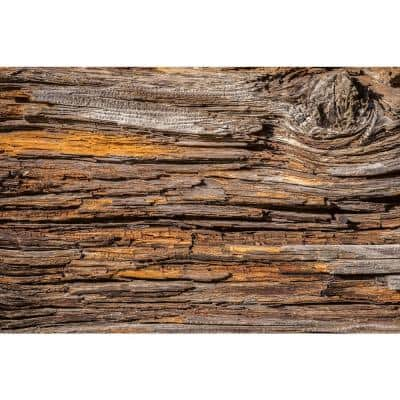 Industrial Tree Bark Farm and Country Wall Mural