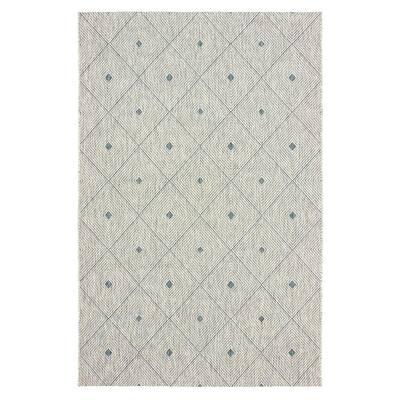 Sun Shower Blue/Gray 5 ft. x 8 ft. Indoor/Outdoor Rectangular Area Rug