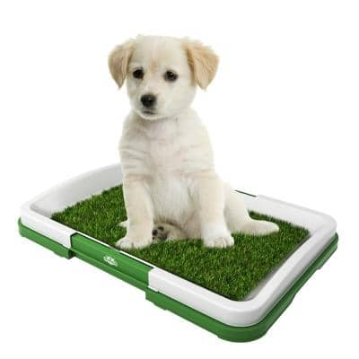 Puppy Potty Trainer Artificial Grass Mat, Tray and 5 Extra Replacement Turf Pads, Portable Indoor Toilet Training